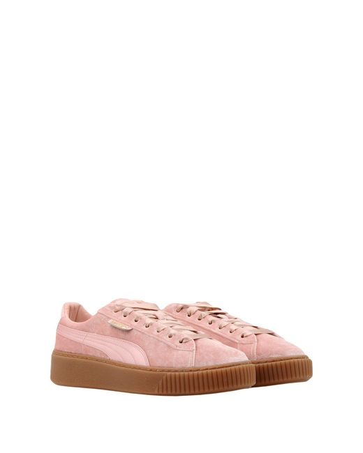 PUMA Pink Low Sneakers & Tennisschuhe