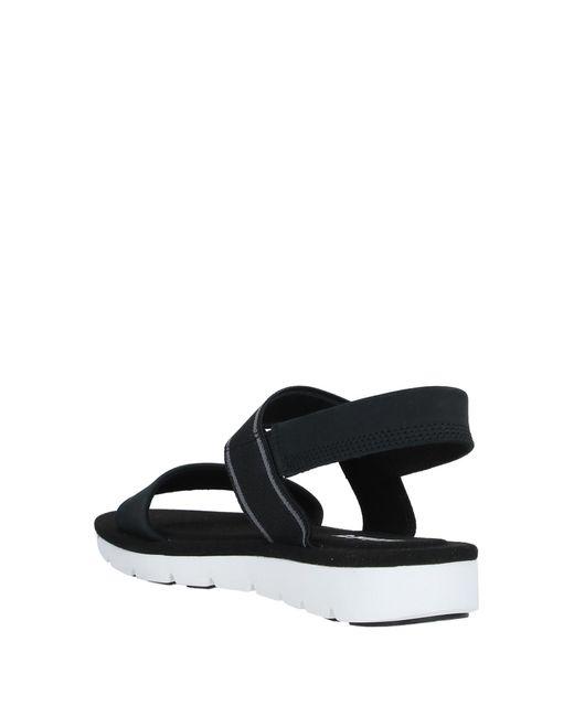 Timberland Black Sandals