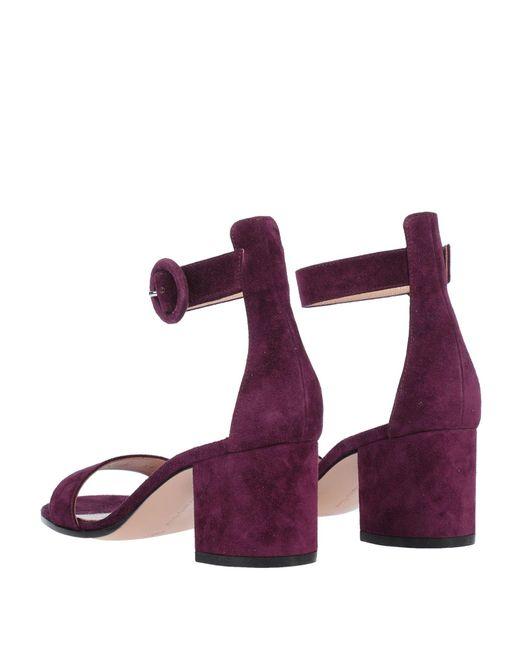 Gianvito Rossi Purple Sandale