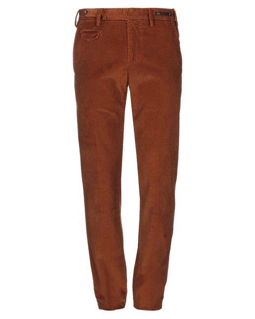 PT Torino Brown Casual Pants for men