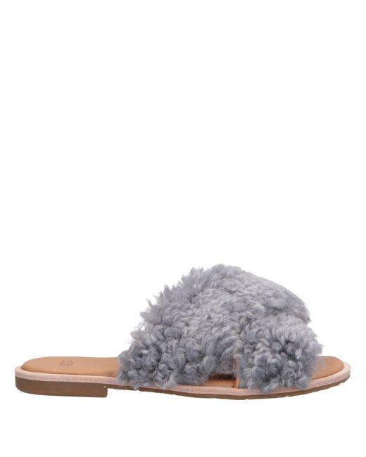 Sandales Ugg en coloris Gray
