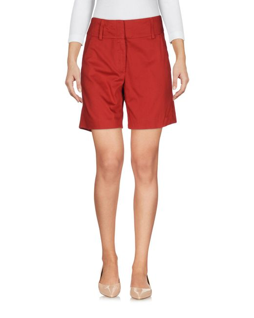 Dondup Red Bermuda Shorts