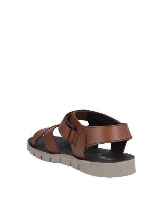 Geox Brown Sandals for men