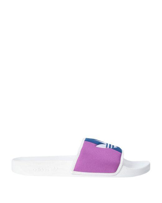 Adidas Originals Blue Sandals for men