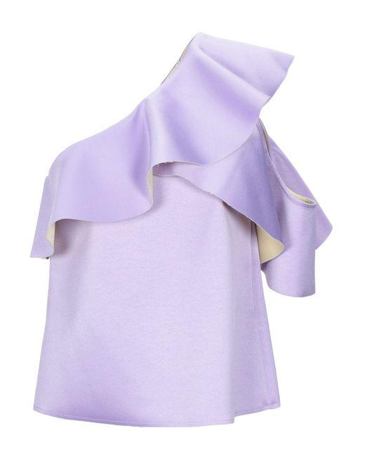 WEILI ZHENG Purple Top