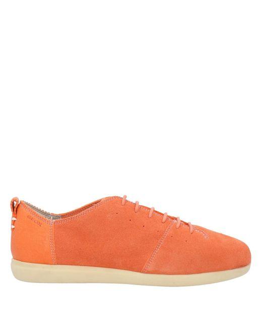 Geox Orange Low Sneakers & Tennisschuhe
