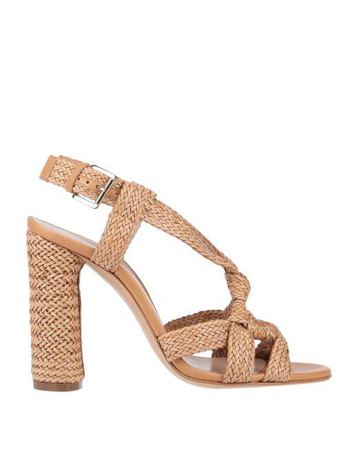 Casadei Multicolor Sandale