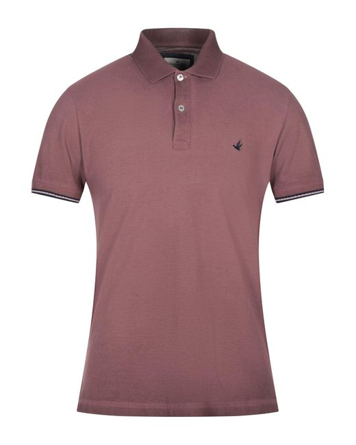 Brooksfield Purple Polo Shirt for men