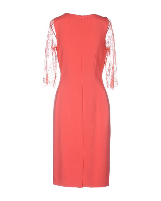 Clips Pink Knee-length Dress