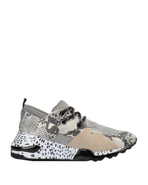 Steve Madden White Low-tops & Sneakers