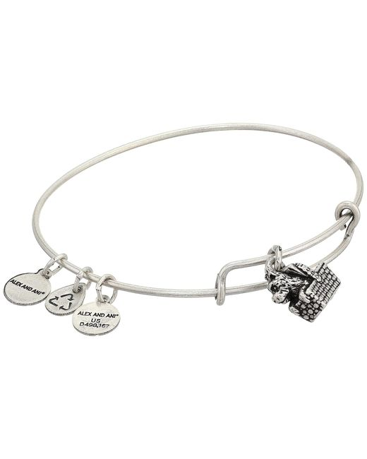 ALEX AND ANI Metallic Wizard Of Oz, Toto Bangle Bracelet