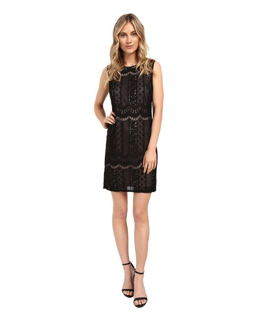 Adrianna Papell | Black Striped Lace Shift Dress | Lyst