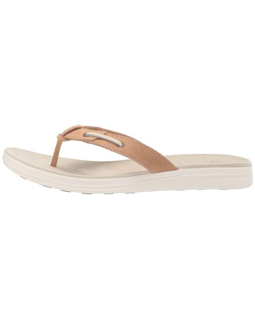 b19f953a51e ... Sperry Top-Sider - Multicolor Adriatic Thong Skip Lace Leather  (platinum) Women s Sandals ...