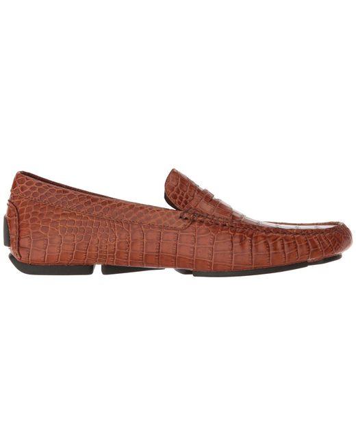 Donald J Pliner Vinco5 fashion shoes clearance  hot sale online