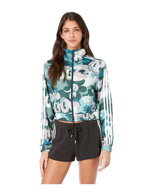 Adidas Originals - Contemporary Bb Track Jacket (multicolor) Women s  Clothing ... 4fffb95df