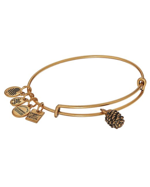 ALEX AND ANI - Metallic Charity By Design Pinecone Bangle - Lyst