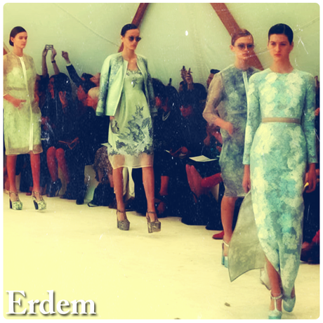 LMJukez's Best Picks: Erdem