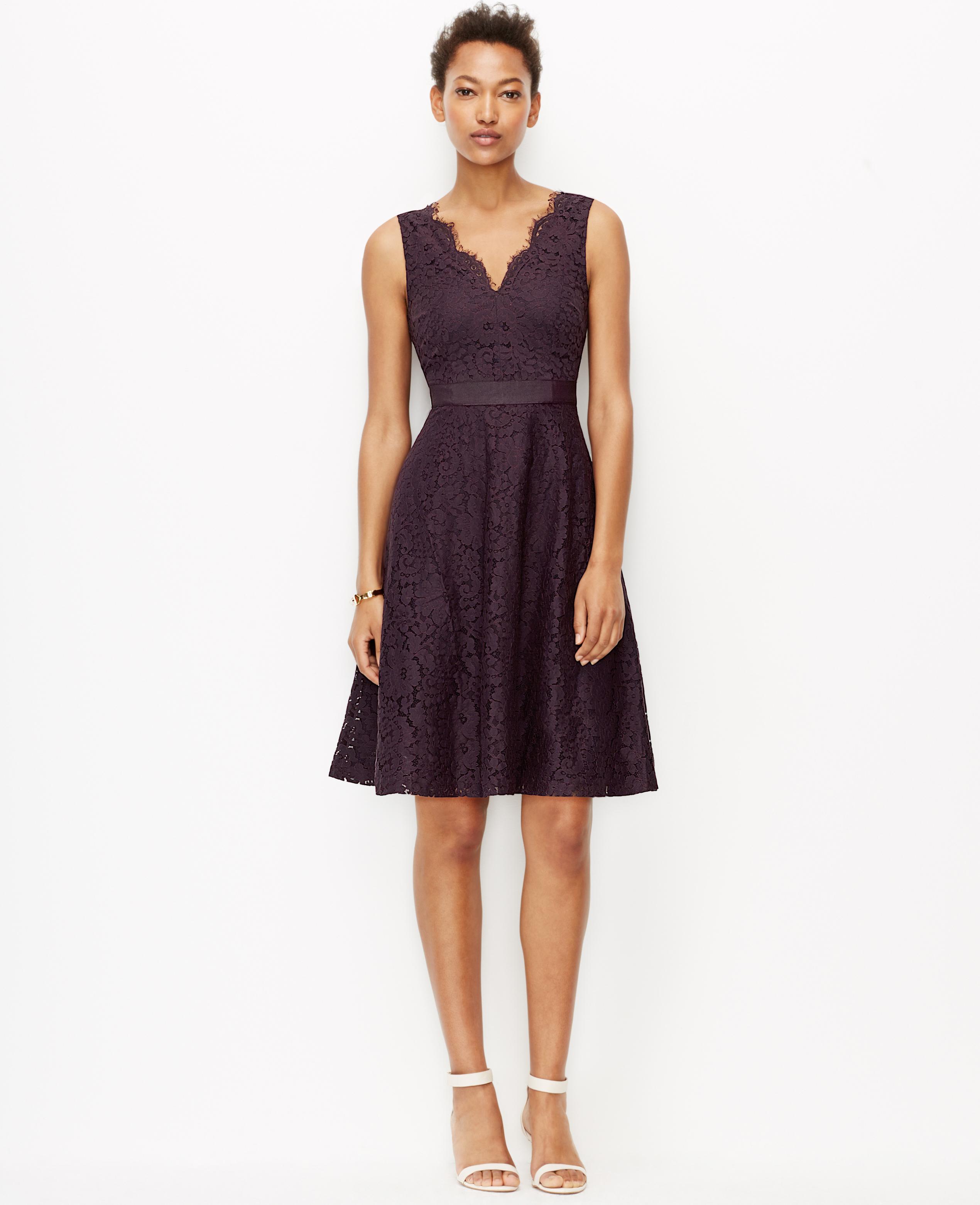 84d65e324500 Ann Taylor Petite Scalloped Lace Dress in Purple - Lyst