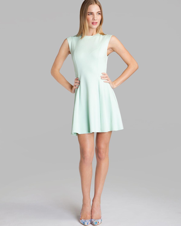 075ecde60 Ted Baker Nistee Skater Dress ( Size 3- 8 US)