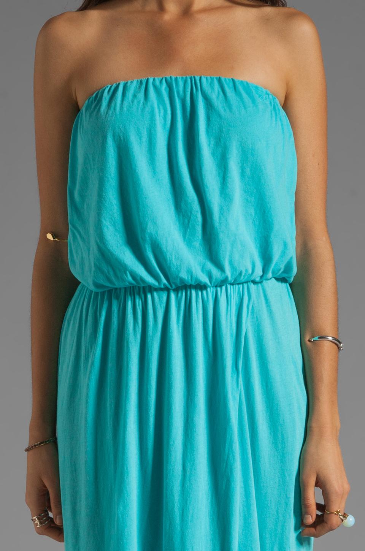 Velvet By Graham Amp Spencer Shivan Sheer Jersey Maxi Dress