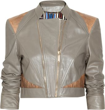 Matthew Williamson Cropped Snakeskin-paneled Leather Jacket - Lyst