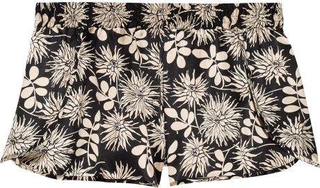 Stella Mccartney Ilda Driving Printed Stretch Silk-Satin Sleep Shorts in Floral (black)