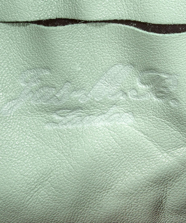 Jas MB Mint Wings Mini Cross Body Bag in Green