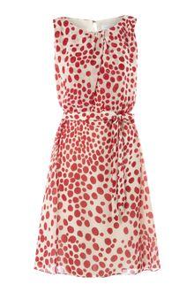 Polka  Dress on Topshop Red Polka Dot Chiffon Dress By Wal G