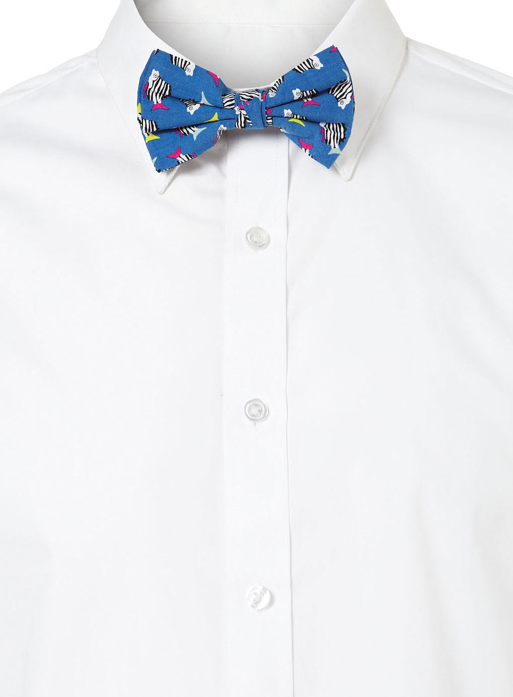 Topman blue zebra fish print bow tie in blue for men for Fish bow tie