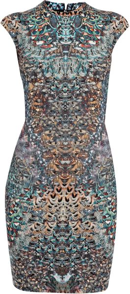 Mcq By Alexander Mcqueen Feather Print Dress in Multicolor (multicoloured)