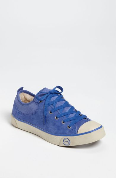 ugg evera suede sneakers