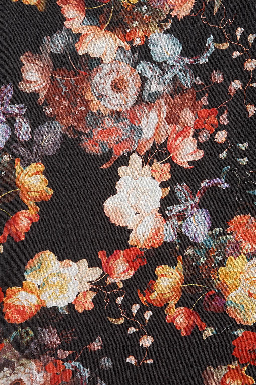 Vintage Aesthetic Roses Wallpaper Roses Gallery