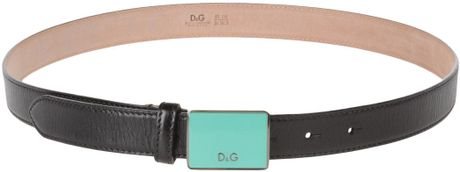D&g Belt in Green