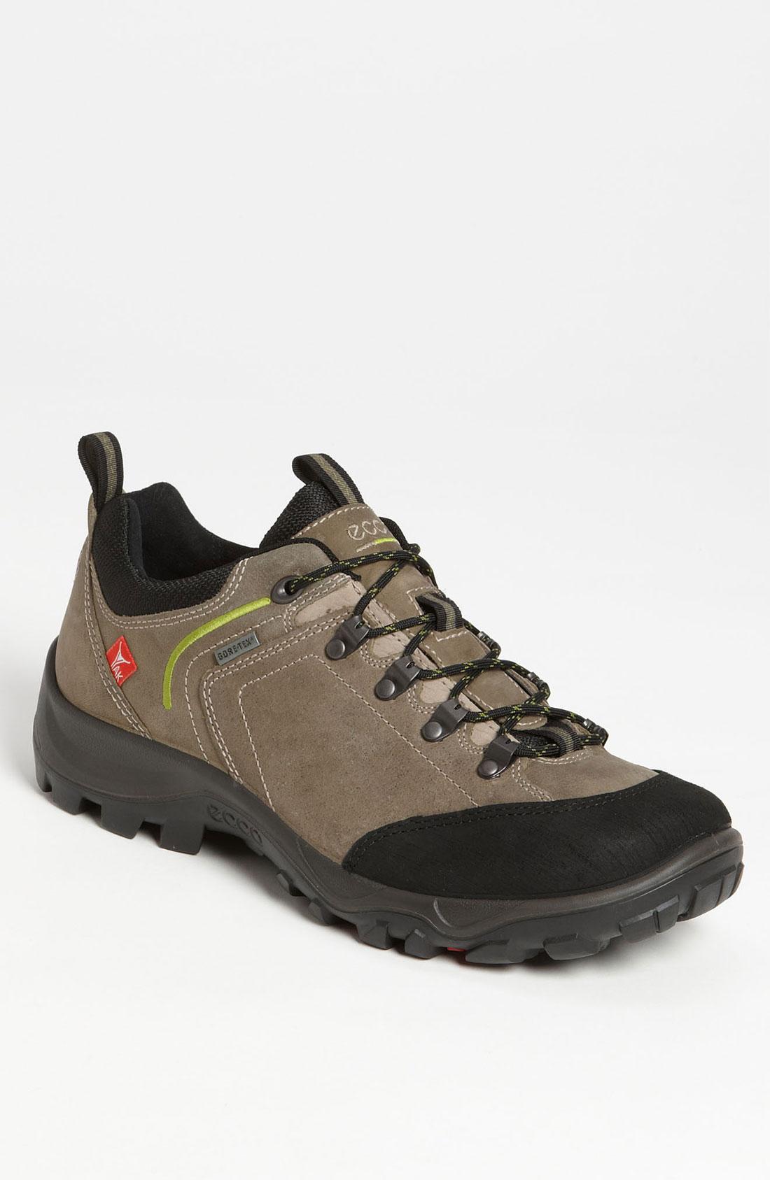 Ecco Sayan Low Ii Gtx Hiking Shoe in Gray for Men (warm