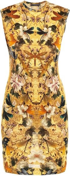 Alexander Mcqueen Hummingbirdprint Dress in Yellow (multicoloured)