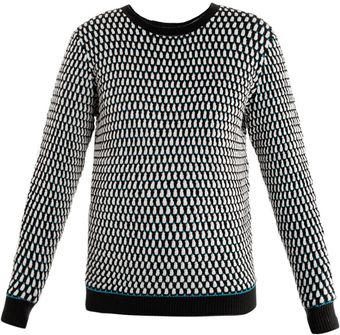 Jonathan Saunders Oval Knit Sweater - Lyst