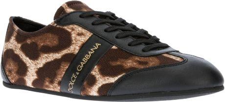Bộ Sưu Tập Giày Thể Thao Dolce & Gabbana Nữ