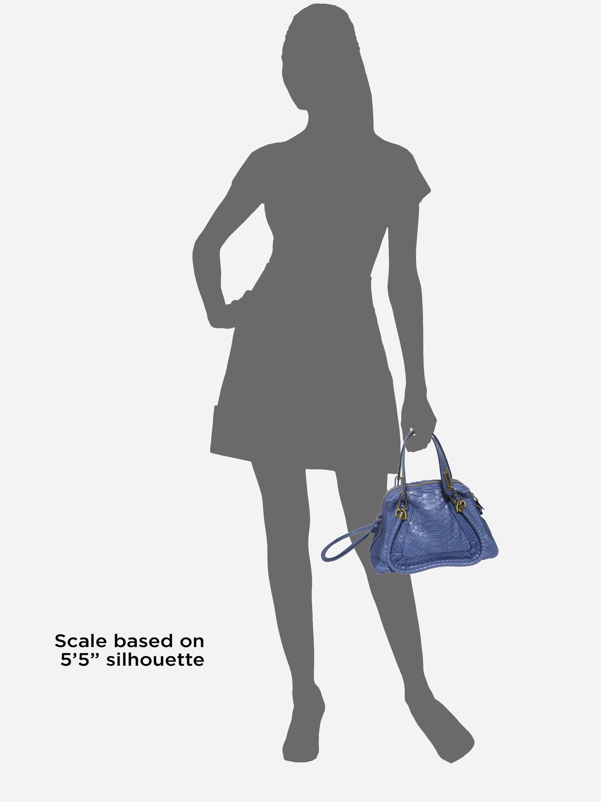 Chlo¨¦ Paraty Small Python Shoulder Bag in Blue (scuba blue) | Lyst