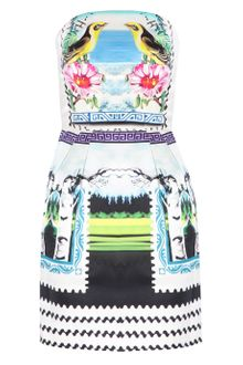 Mary Katrantzou Strapless Bird Puff Dress - Lyst