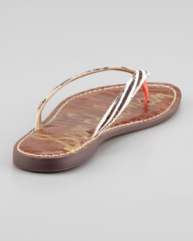 0e21f3c9b066 Lyst - Sam Edelman Gracie Animal print Calf Hair Thong Sandal in Brown