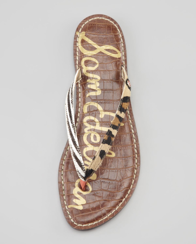 48930f587 Lyst - Sam Edelman Gracie Animal print Calf Hair Thong Sandal in Brown