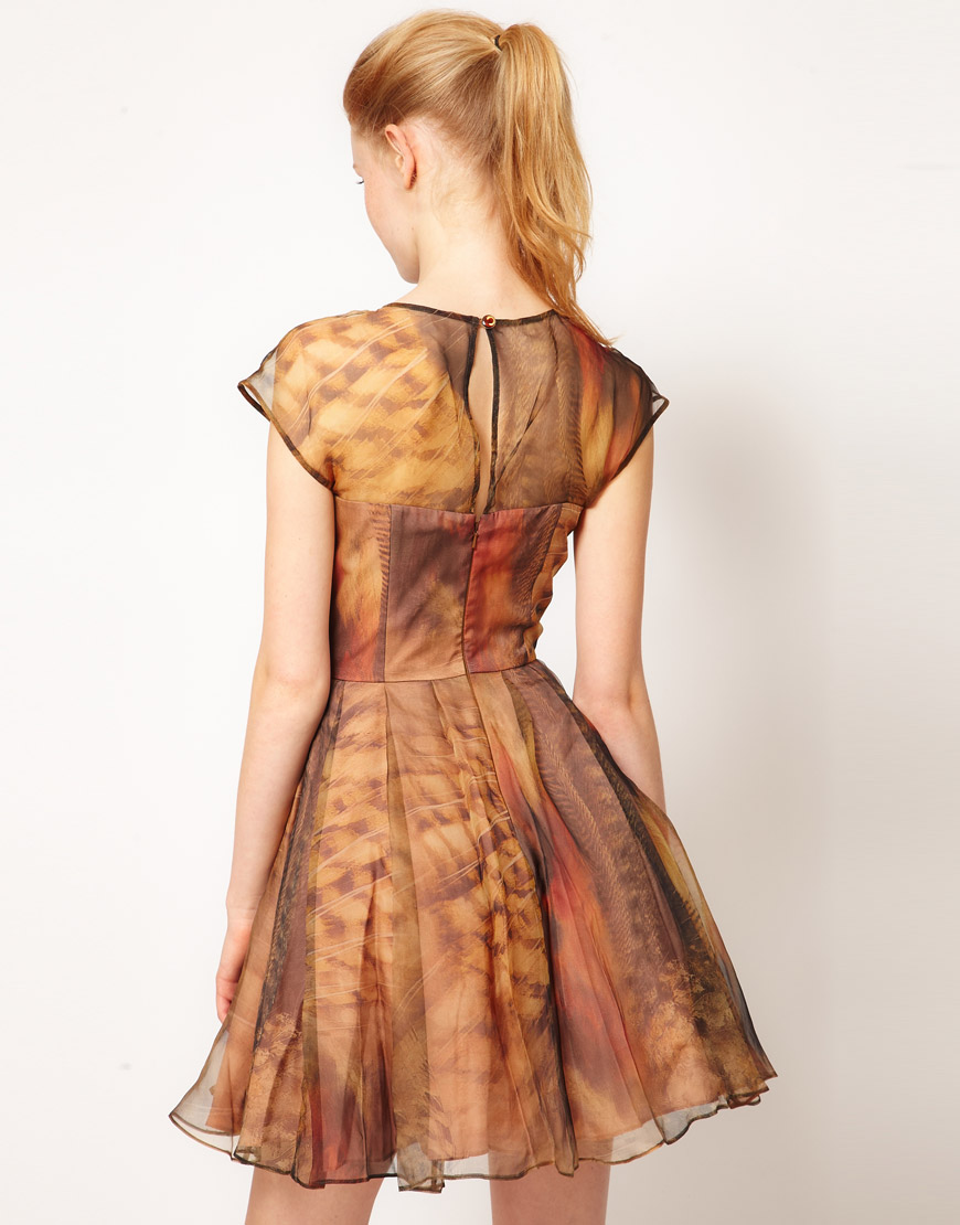 Lyst Ted Baker Woodland Feather Prom Dress In Brown