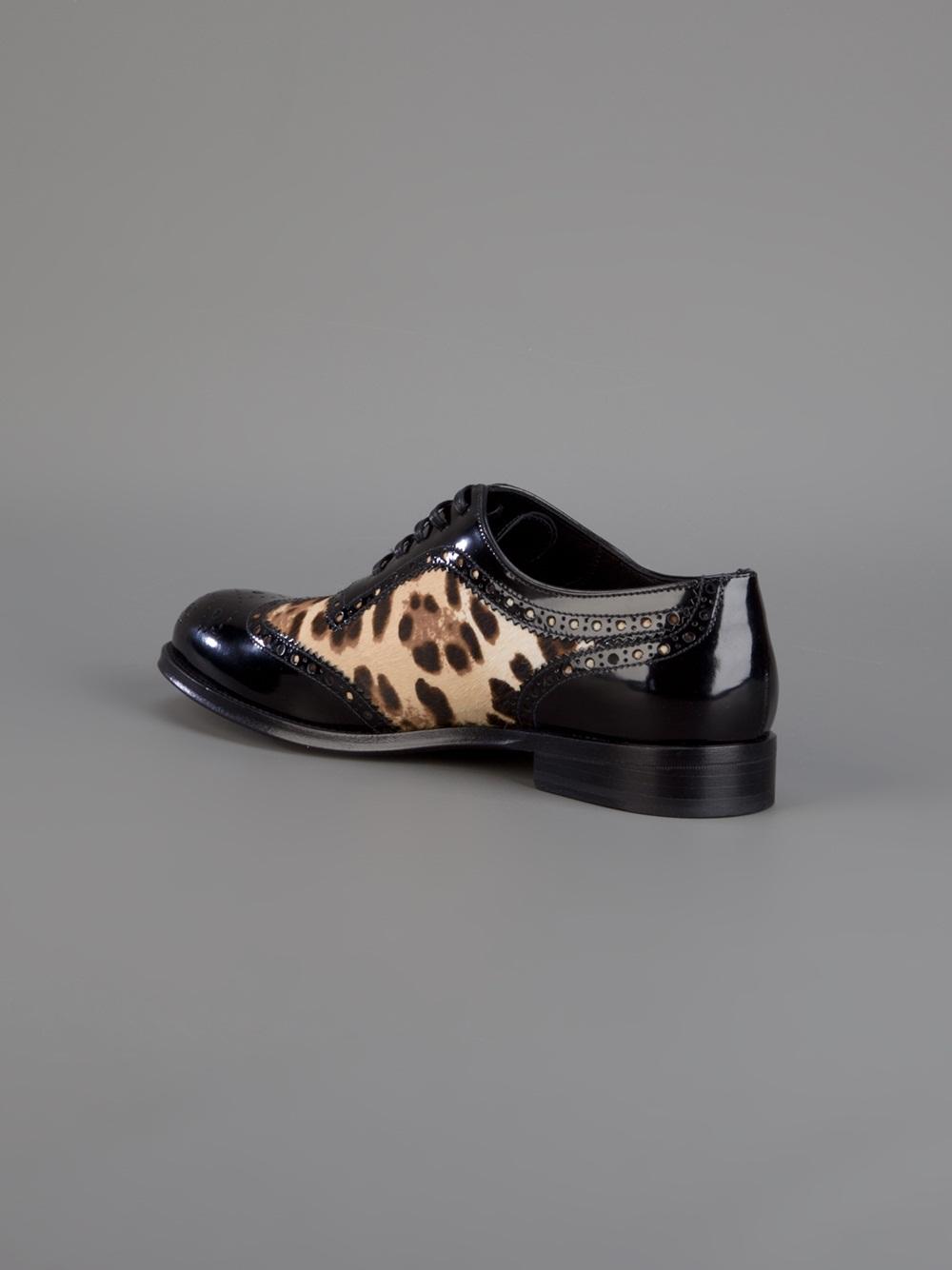Dolce Amp Gabbana Leopard Print Brogues In Brown Lyst