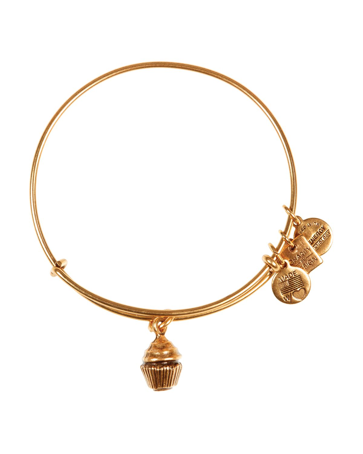Alex And Ani Charm Bracelets: Alex And Ani Charity By Design Collection In Metallic