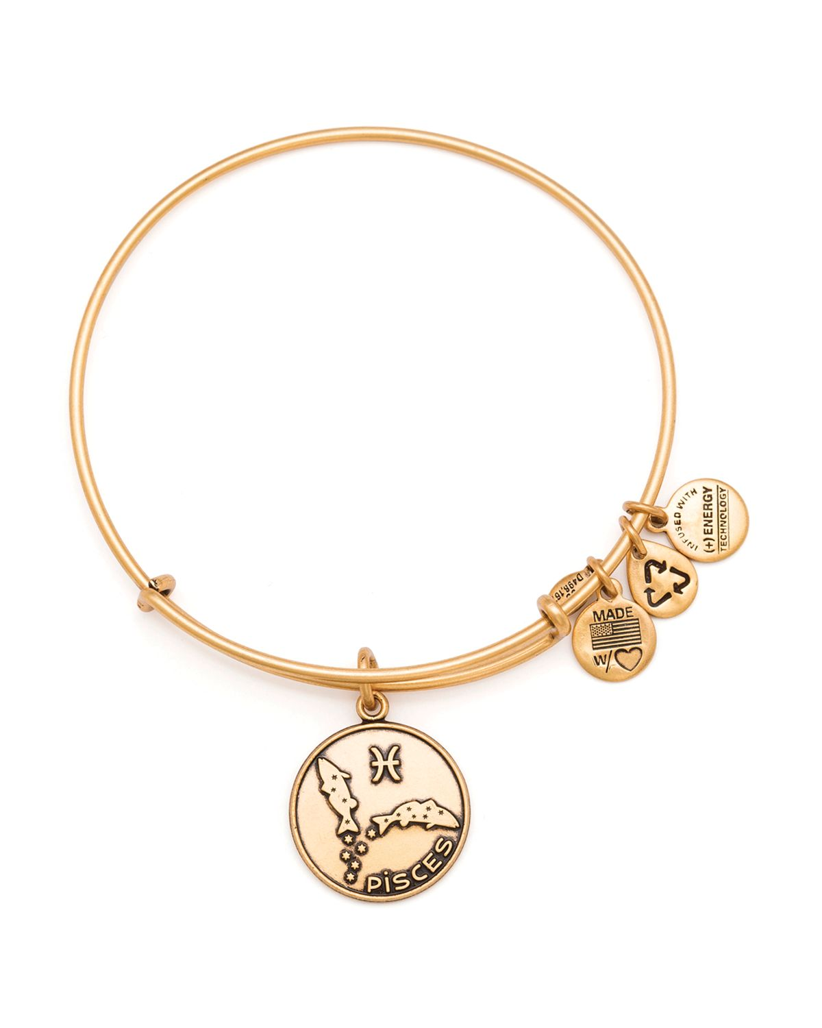 Alex And Ani Charm Bracelets: Alex And Ani Pisces Bangle In Metallic