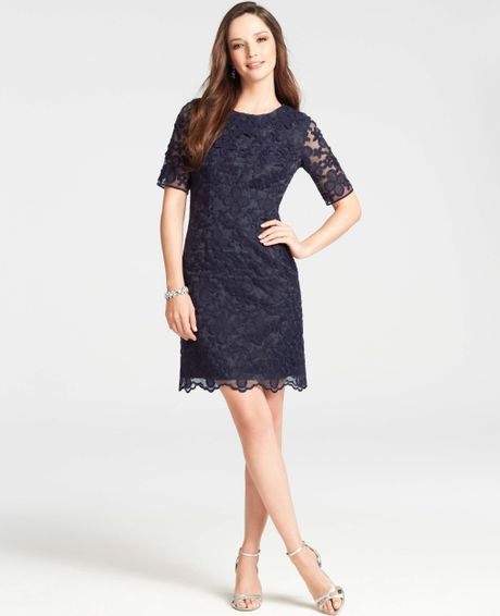 Ann Taylor Embroidered Floral Short Sleeve Dress In Blue