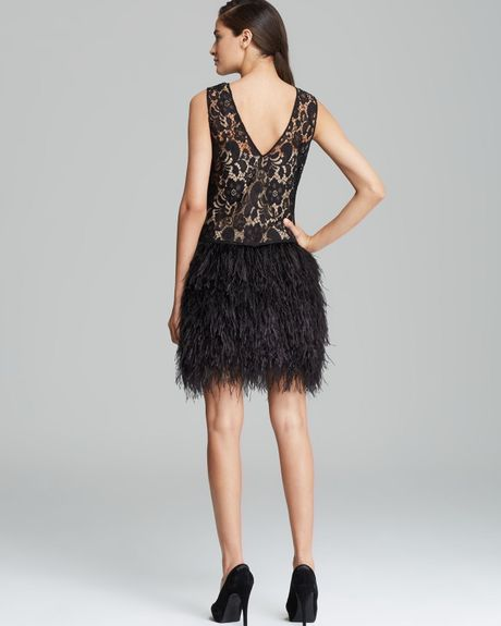 Cynthia Steffe Sleeveless Lace Ostrich Feather Skirt Dress