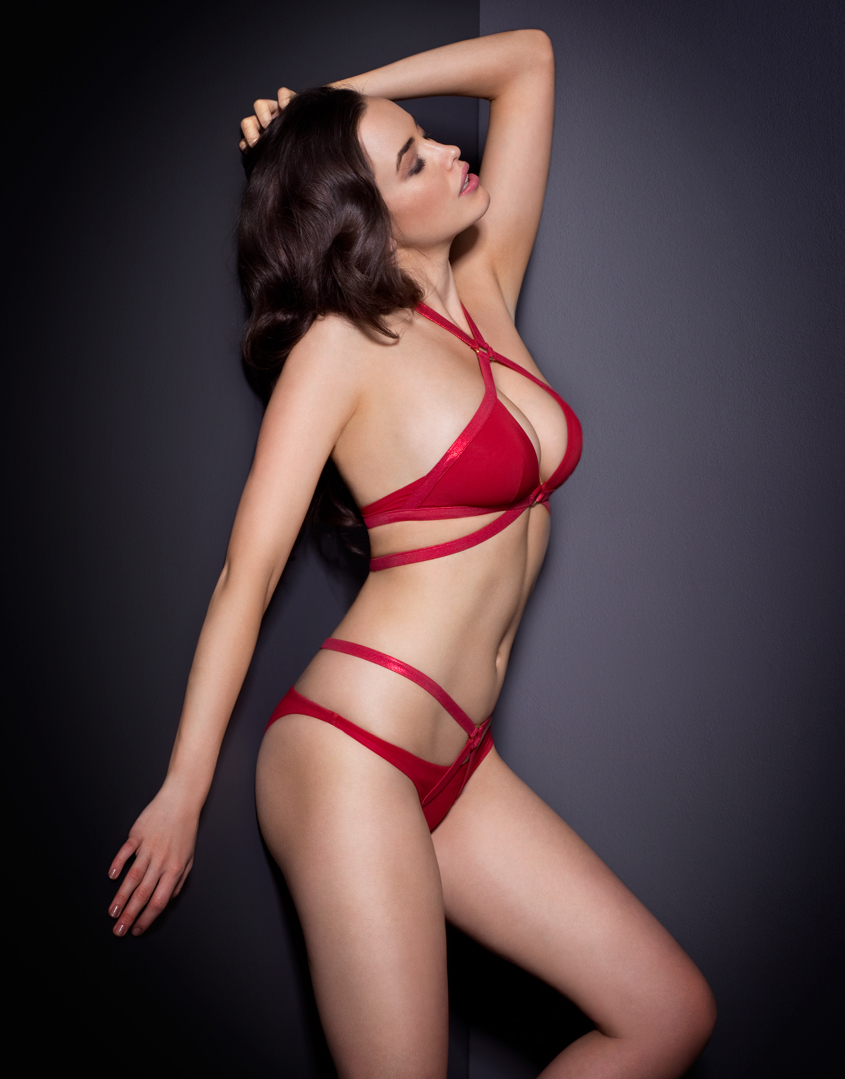 Agent Provocateur Shelby Bikini Bra Red In Red Lyst