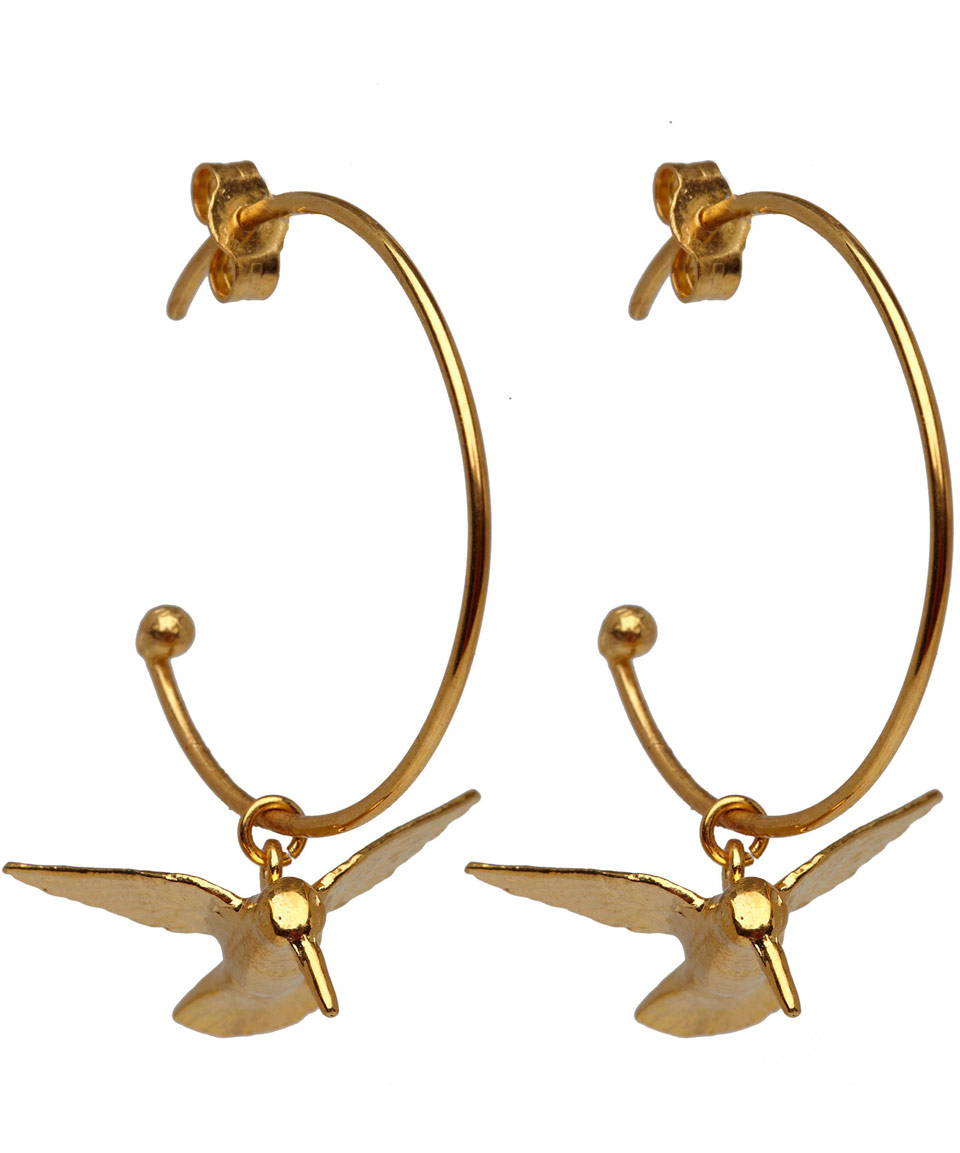 Gallery Women S Gold Hoop Earrings