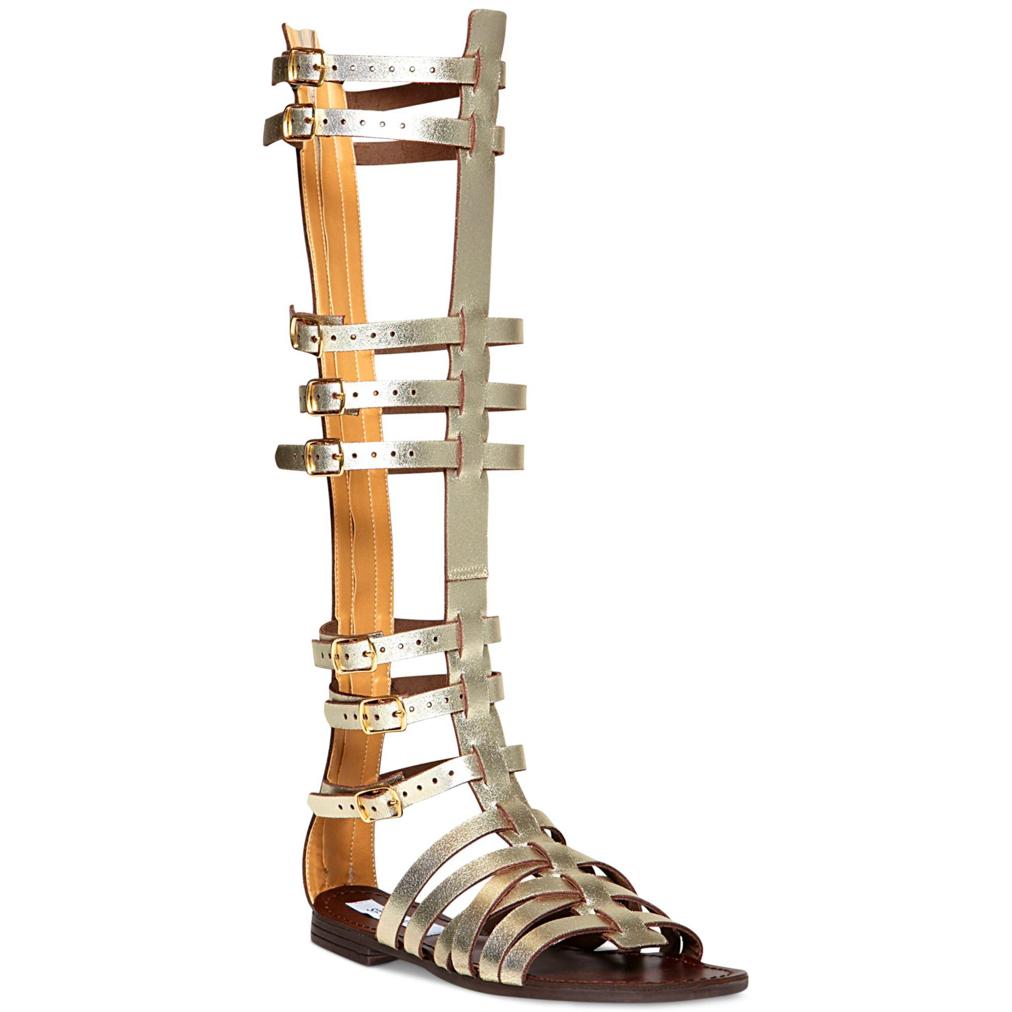 c927763d8ef Steve Madden Metallic Sparta Tall Gladiator Sandals